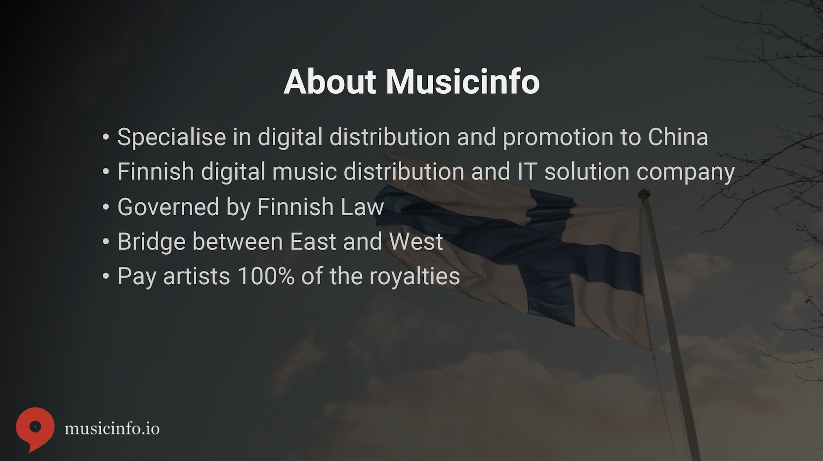 Musicinfo Overview 2